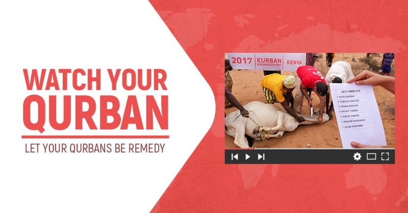 Send Your Qurban To Those In Need